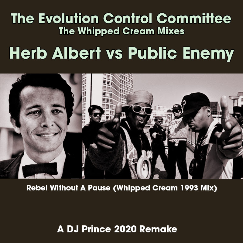 The Evolution Control Committee - Rebel Without A Pause (DJ Prince Remake)